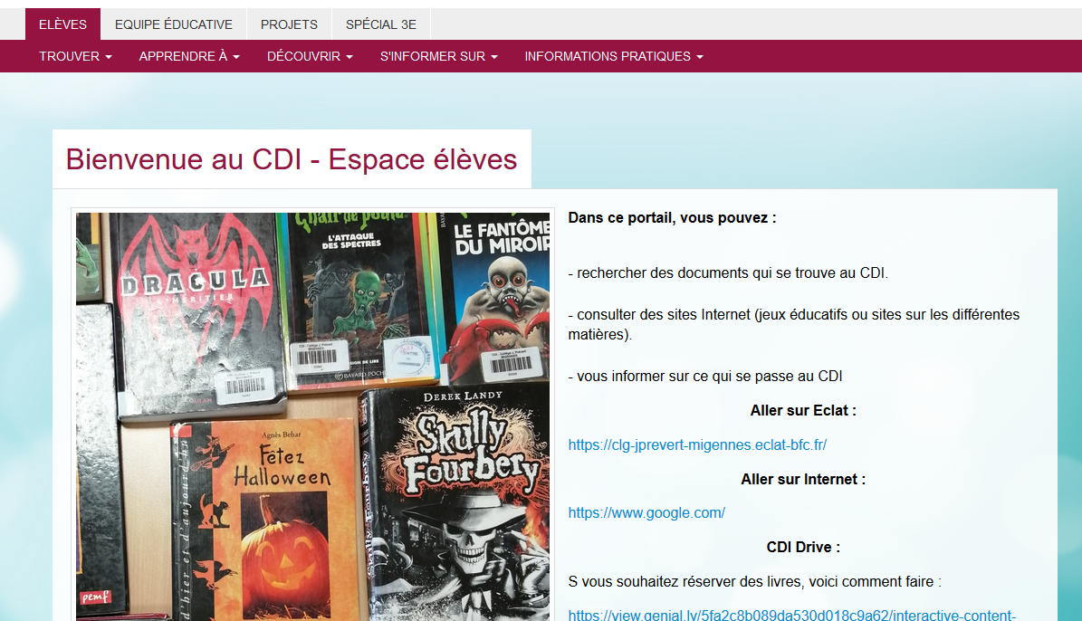 page accueil esidoc.png